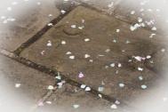 8. Confetti