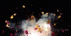 Flower_Explosion_1