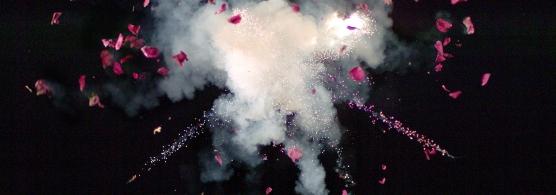 Flower_Explosion_2