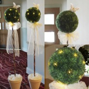 HJE Topiary Trees
